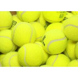 Kyпить 25 used tennis balls   Grade A   FREE FAST SHIP   Support our Non Profit Mission на еВаy.соm