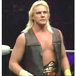 6 Pro Wrestling DVDs: The Best of BARRY WINDHAM!