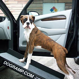 Temporary Out Of Stock New Dogramp Sidekick Car Ramp Dog
