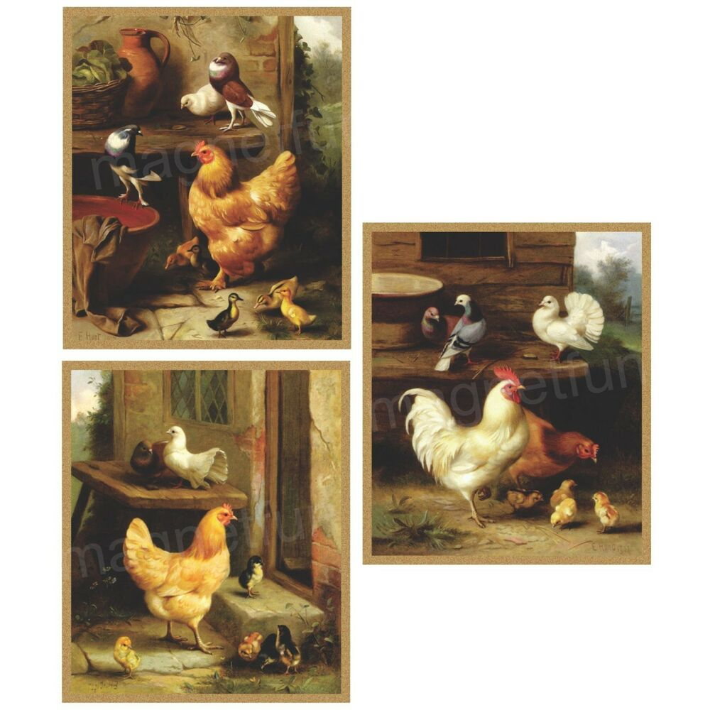 Chicken Amp Rooster Fridge Magnets Set Of 3 Diff Large Ebay