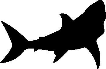 GREAT WHITE SHARK SILHOUETTE CAR DECAL STICKER | eBay