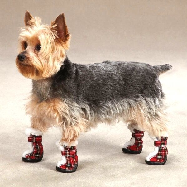 Dog boot tartan plaid bootie sherpa trim velcro close boots by east