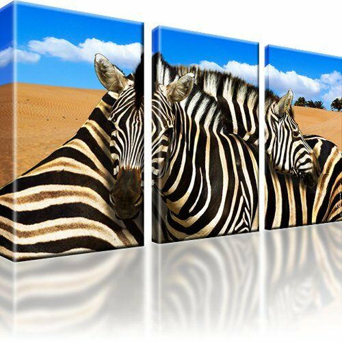 zebra tiere afrika sahara landschaft bild leinwand keilrahmen wandbild ebay. Black Bedroom Furniture Sets. Home Design Ideas