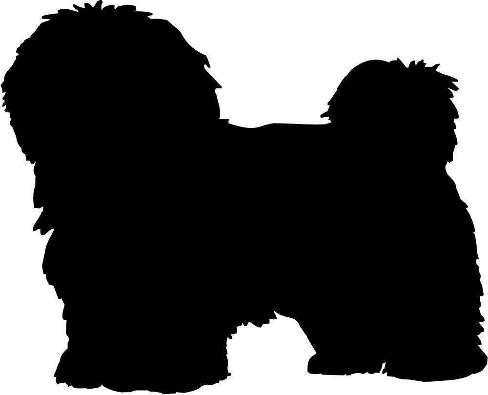HAVANESE DOG DECAL STICKER CAR VAN VINYL WINDOW GRAPHIC ...