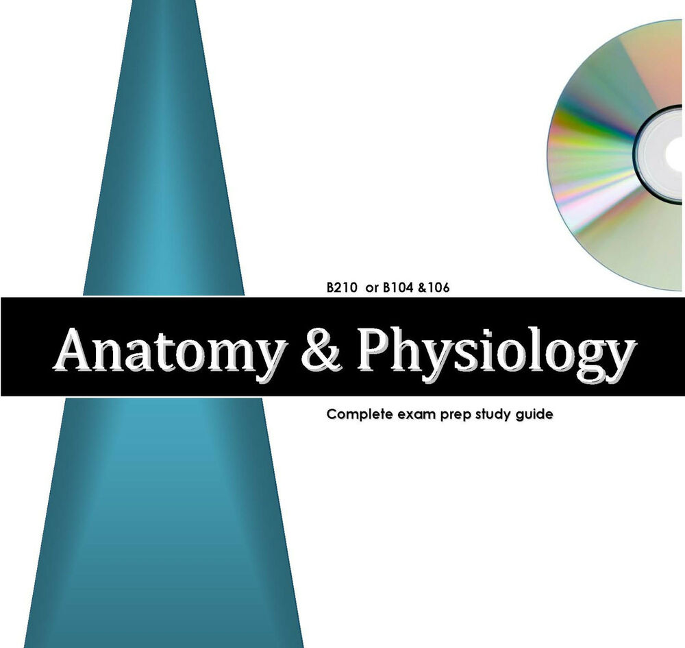 Anatomy and physiology final exam College paper Writing Service ...