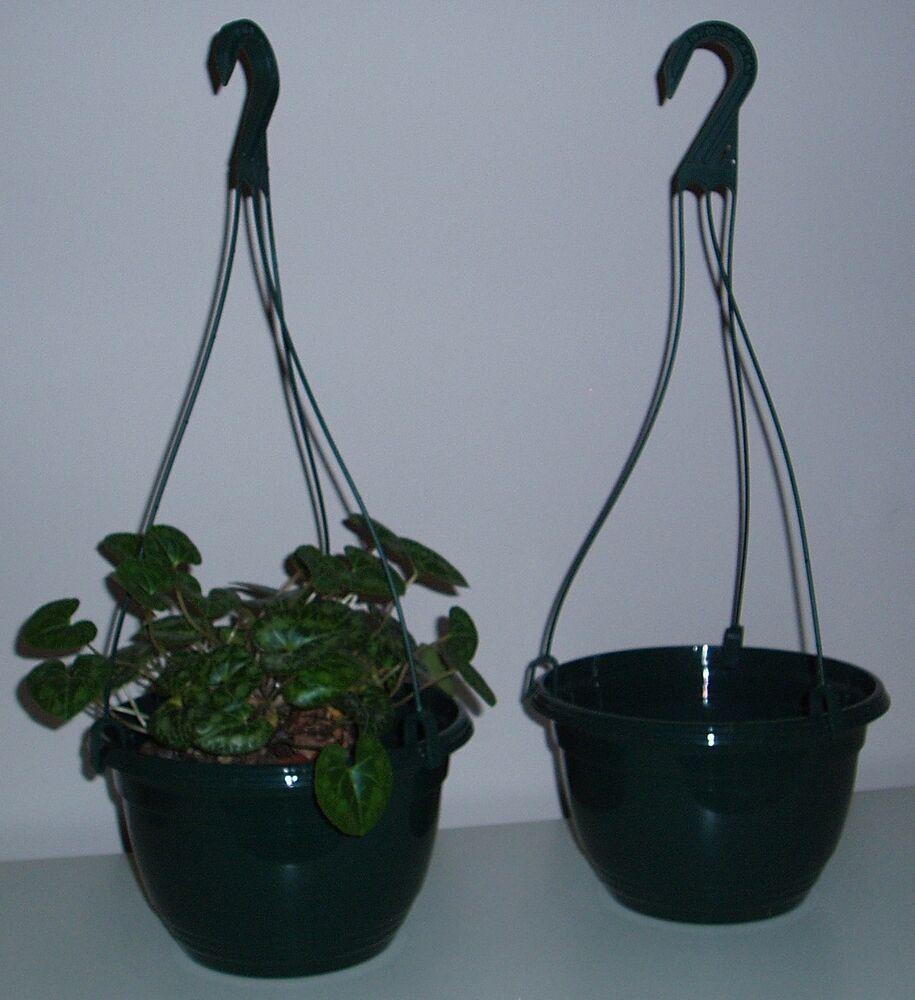 "Plastic Hanging Baskets For Plants: SET OF TWO NEW GREEN PLASTIC 8"" HANGING BASKET PLANTERS"