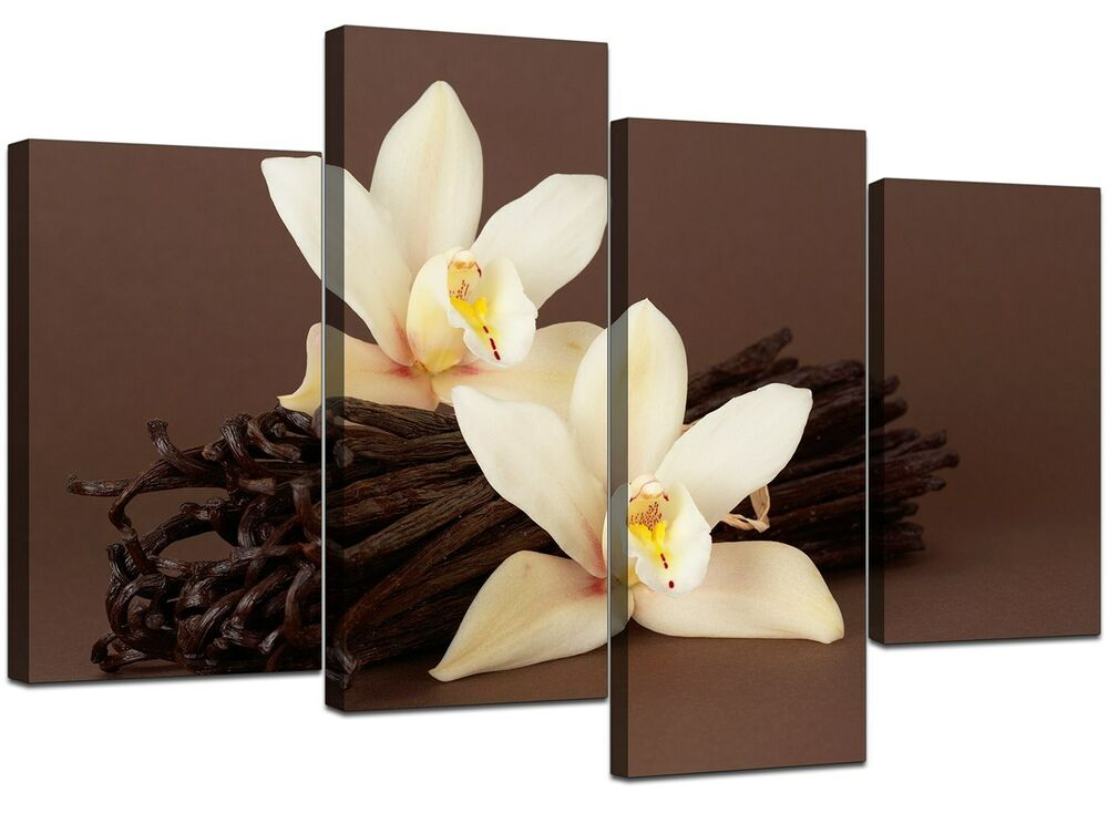 Wall Art Canvas Brown : Brown orchid flower floral canvas wall art pictures set
