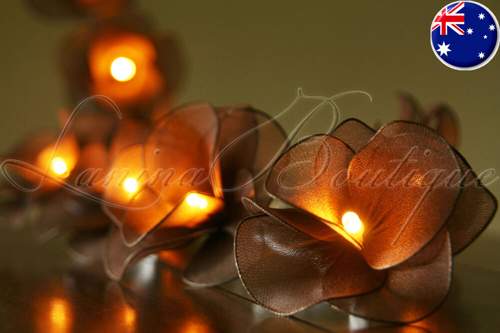 20 CHOCOLATE BROWN Nylon Rose Flower LED String Fairy Lights Lanterns Xmas Gift eBay
