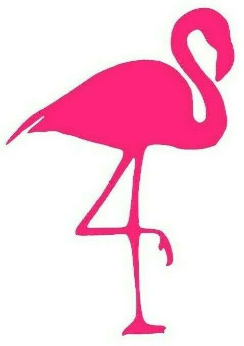 Flamingo Decal Sticker Car Window Laptop Tablet Choose Size And Color Ebay