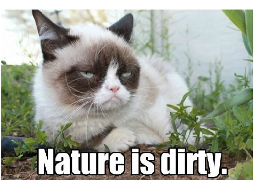 Funny Grumpy Cat Nature Is Dirty Refrigerator Tool Box Magnet Ebay