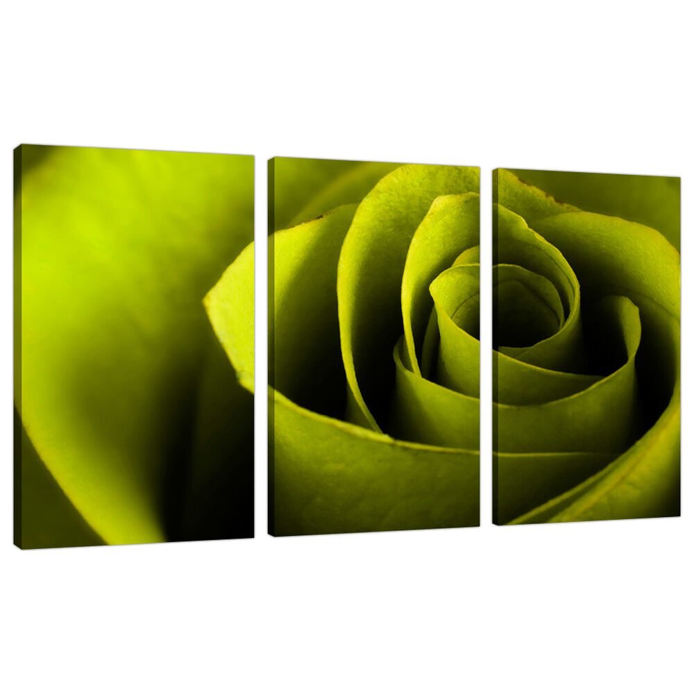 Three lime green canvas pictures wall art bed living room for Lime green wall art
