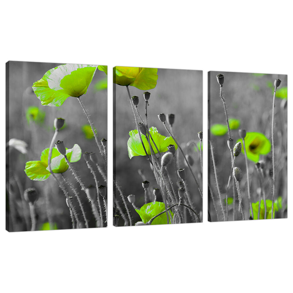 Set three cheap large lime green canvas art wall pictures for Lime green wall art