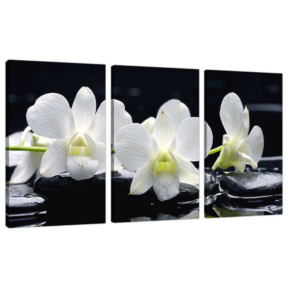 Wall Decor White Flowers : Set of panel black white floral canvas wall art flowers