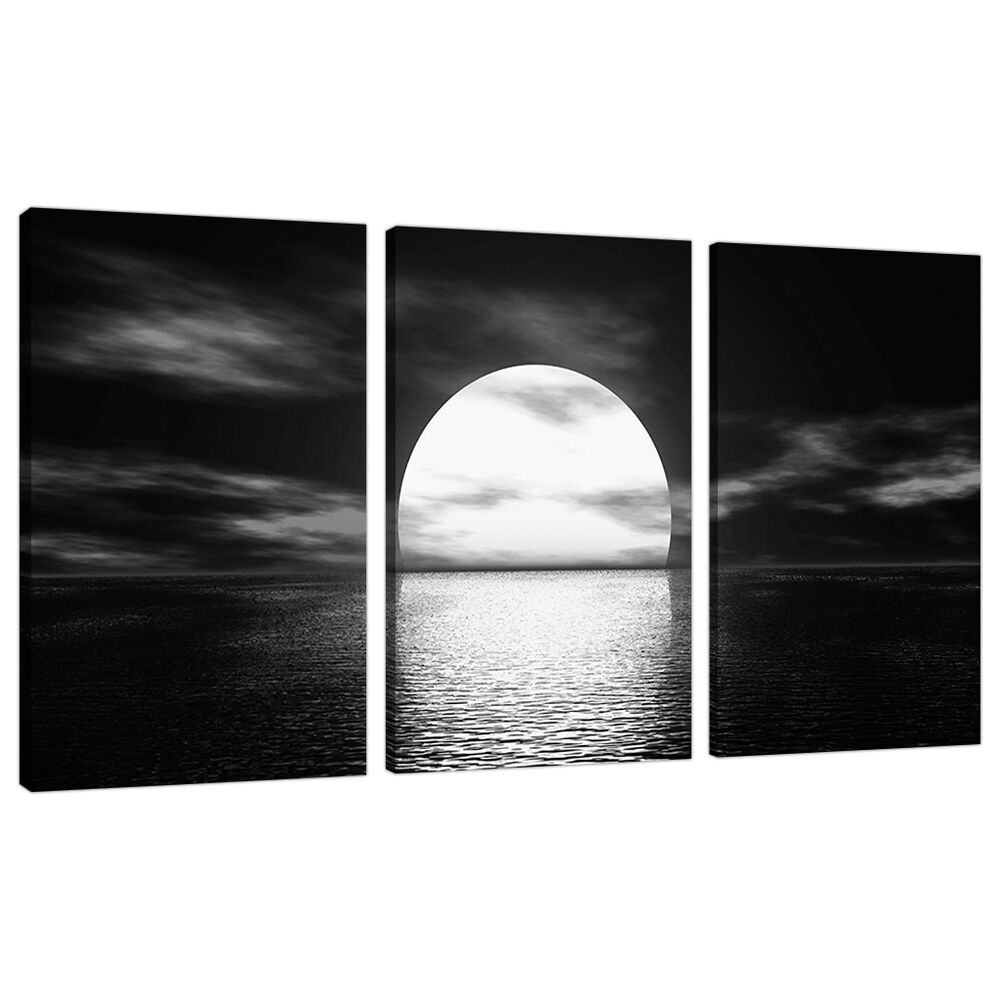 Set of 3 panel black white canvas wall art pictures large for White canvas painting