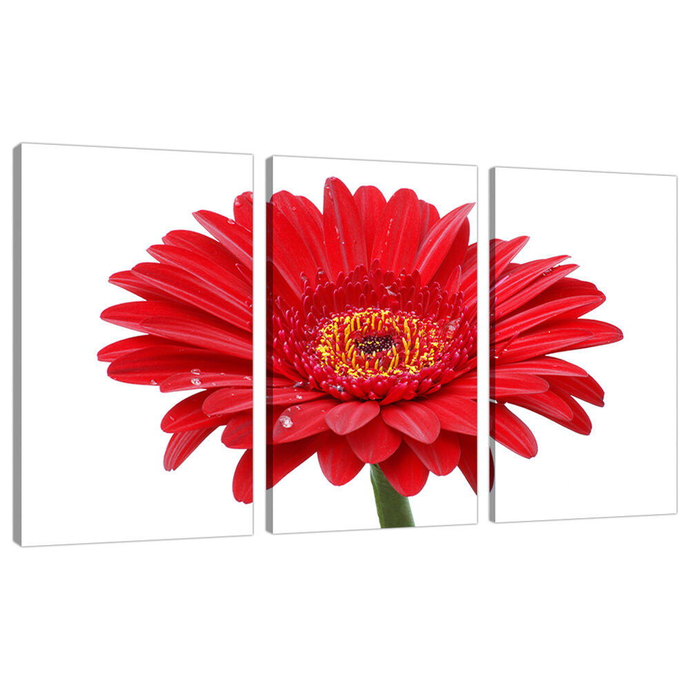 set of 3 piece red floral canvas wall art pictures flowers. Black Bedroom Furniture Sets. Home Design Ideas