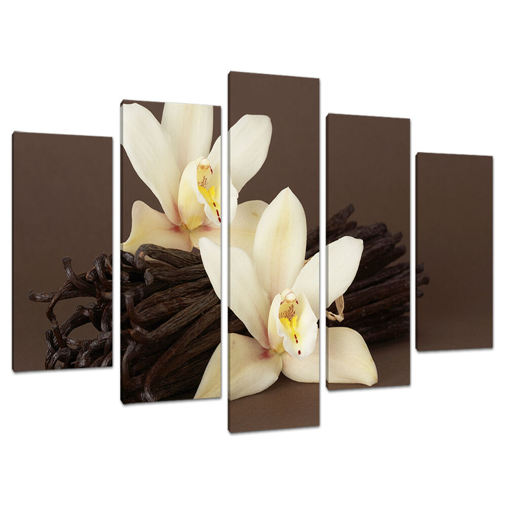 Wall Art Canvas Brown : Set of piece large brown cream floral canvas wall art