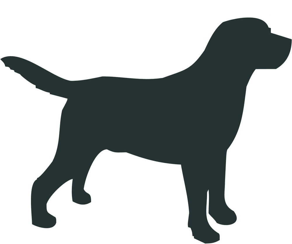 Dog Sign Uk