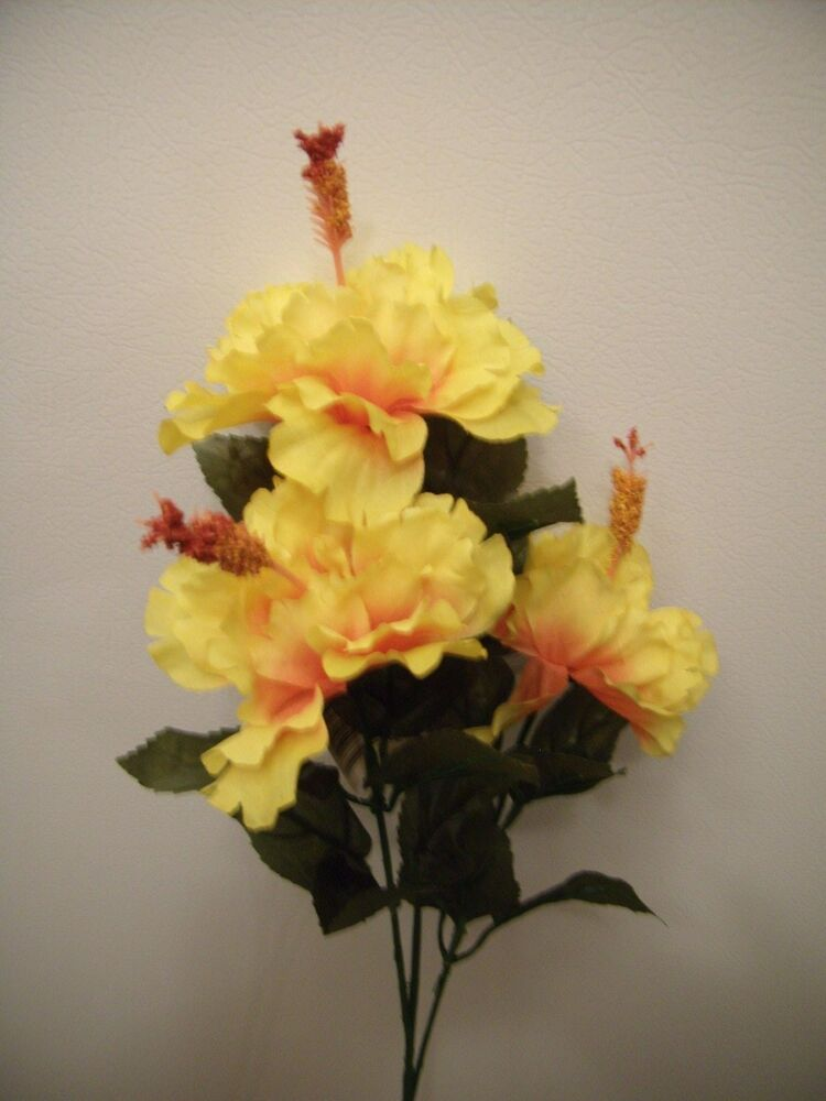 Hibiscus Are Very Beautiful With Yellow And Red 109