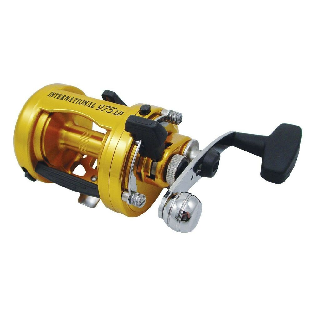 Penn international baitcast 975ld conventional fishing for Ebay fishing reels