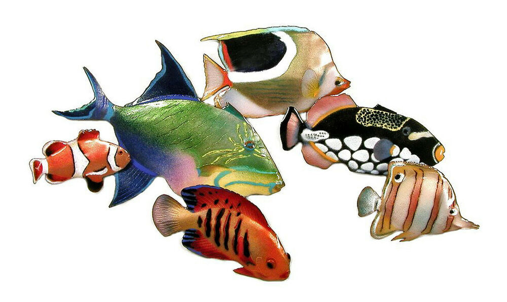 Wall art colorful fish metal wall sculpture nautical for Fish wall art