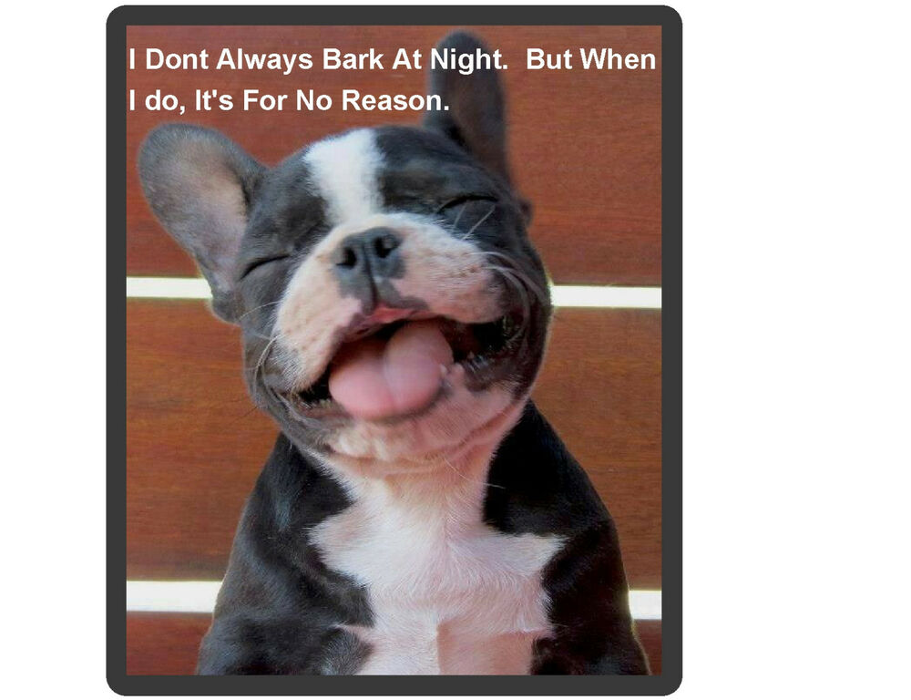 Funny French Bull Dog Bark At Night Refrigerator Tool Box Magnet Ebay