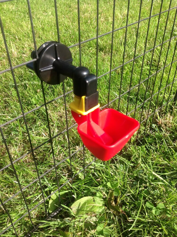 Large Auto Cup Drinker For Poultry Chicken Chick Cage