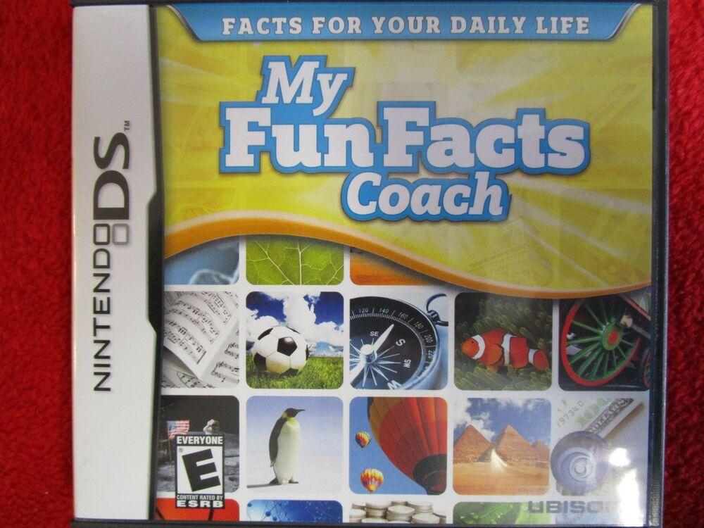 fun ds games for adults