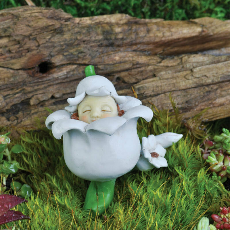 My fairy gardens miniature may lily of the valley baby for Myfairygardens com