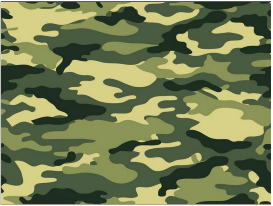 Edible Camouflage Cake Decorations