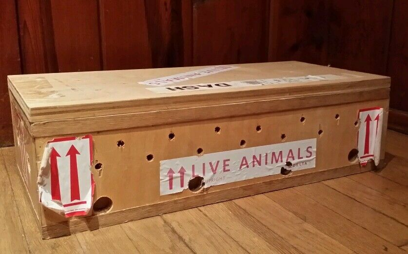 Delta Airlines Wooden Crate Cage Box For Live Animals Pet
