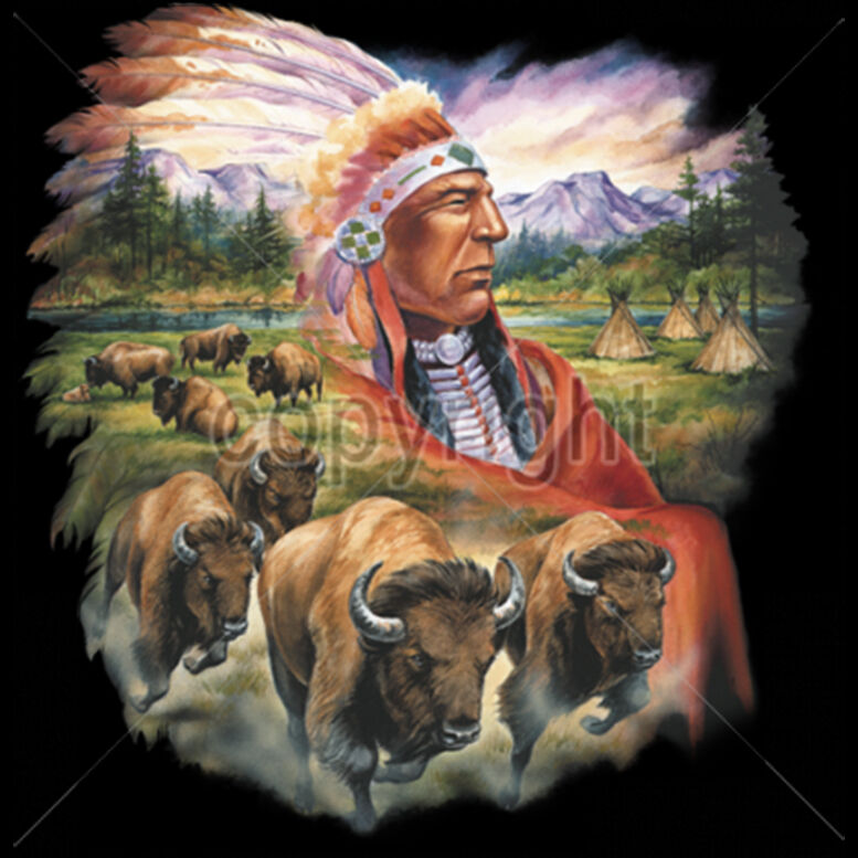Native American T Shirts For Men