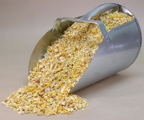 Cracked corn chicken feed