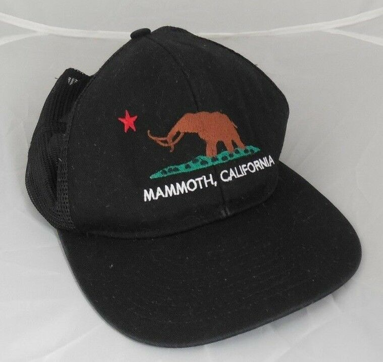 Can Ebay vintage hats