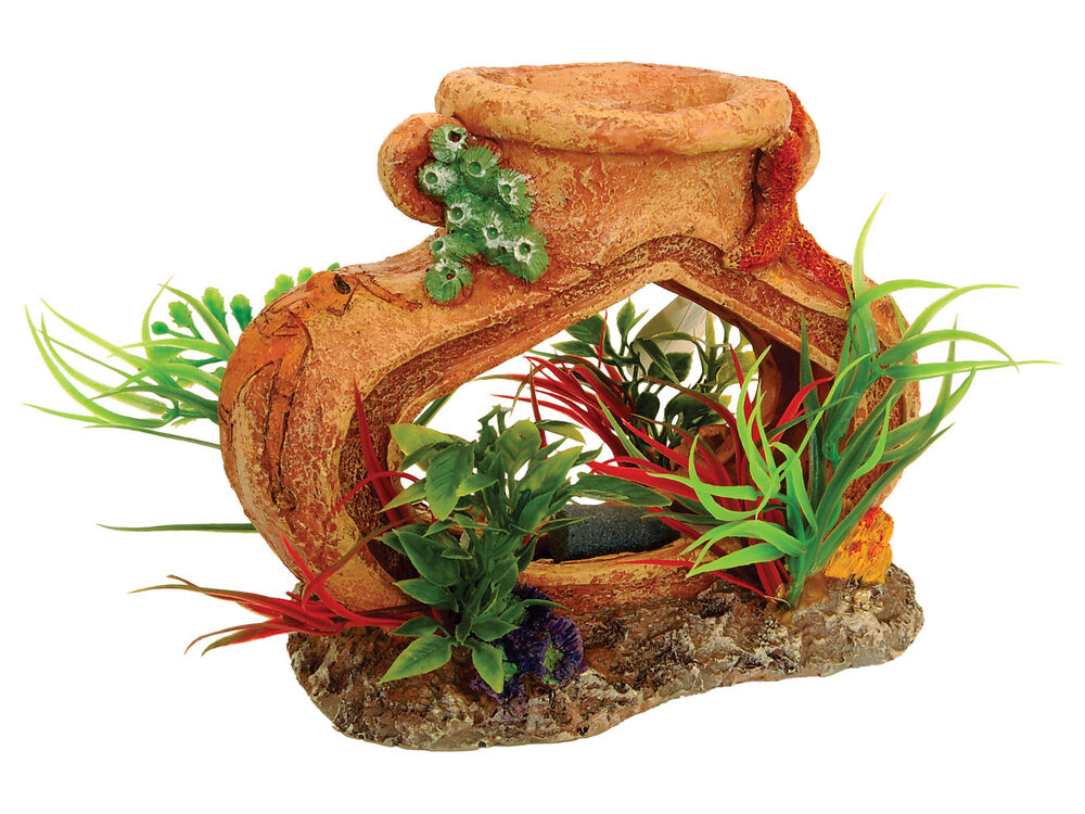 Pot vase with air stone plants fish tank decoration for Plant with fish in vase