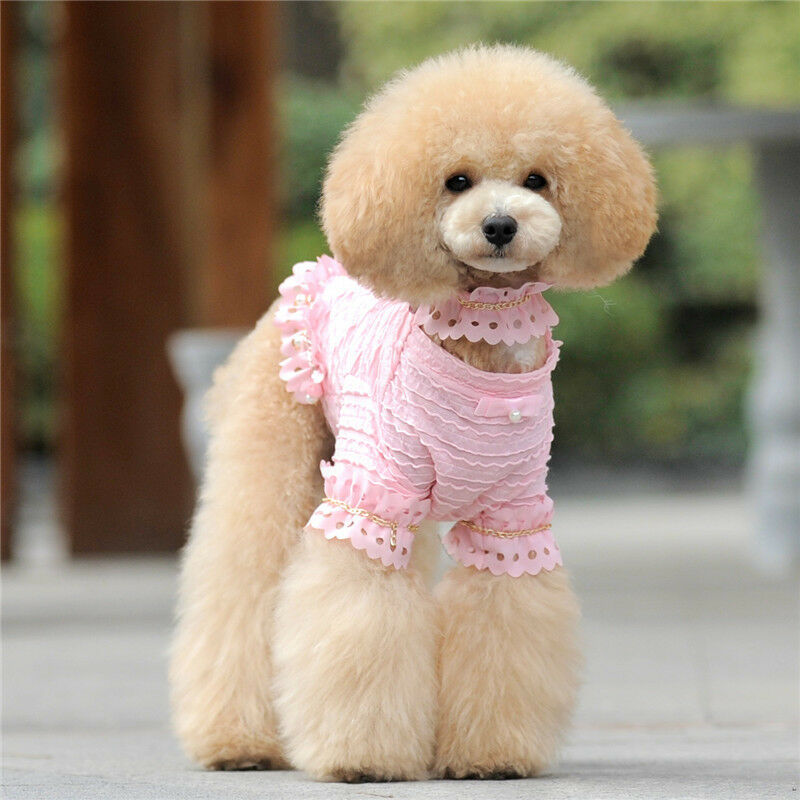 Toy Size Dogs : Dog dress lace clothes apparel with necklace for teacups