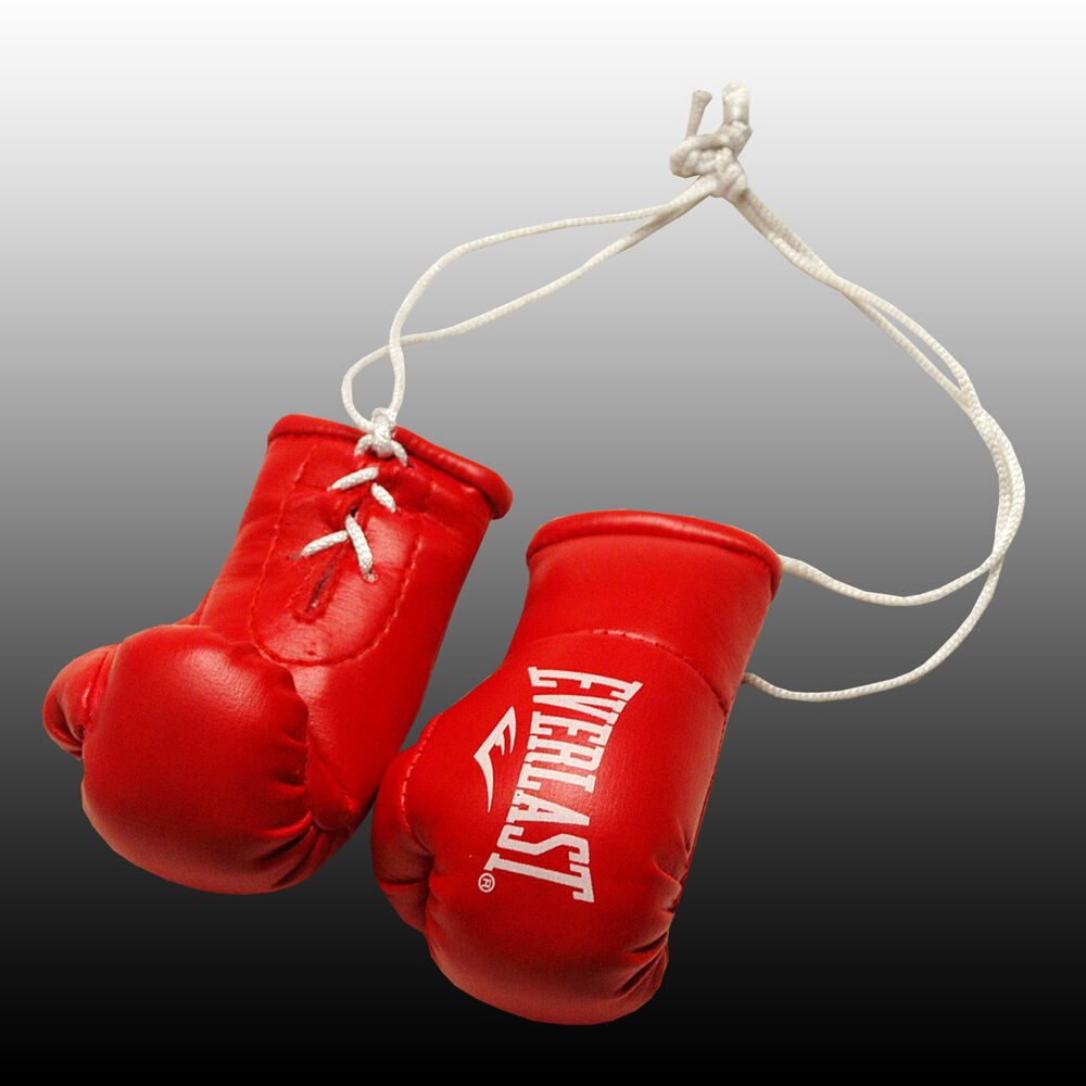 Shiv Naresh Teens Boxing Gloves 12oz: EVERLAST MINI BOXING GLOVES FOR THE REAR VIEW MIRROR OF