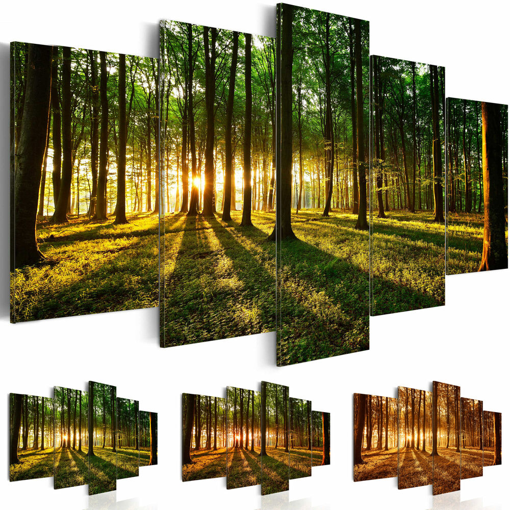leinwand bilder xxl fertig aufgespannt bild wald natur sonne b b 0027 b n ebay. Black Bedroom Furniture Sets. Home Design Ideas