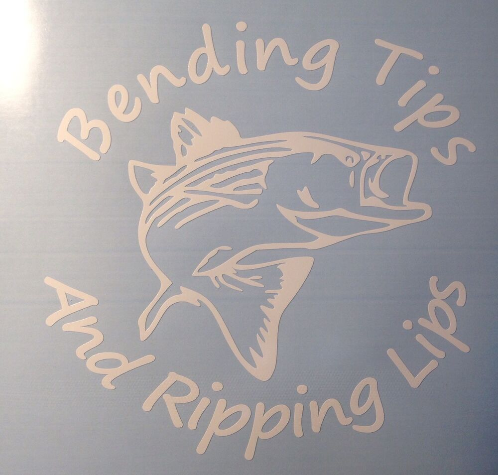 Bending tips and ripping lips striped bass fishing vinyl for Fishing vinyl decals
