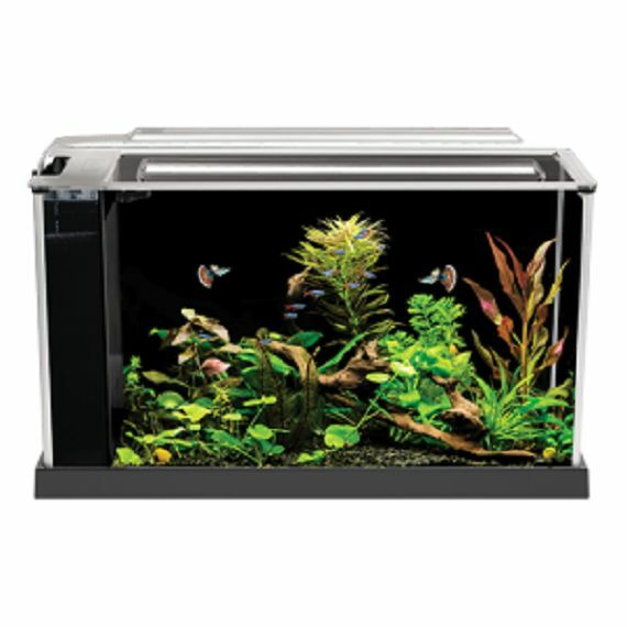 Fluval spec v aquarium 5 gallon black desktop glass for 5 gallon glass fish tank