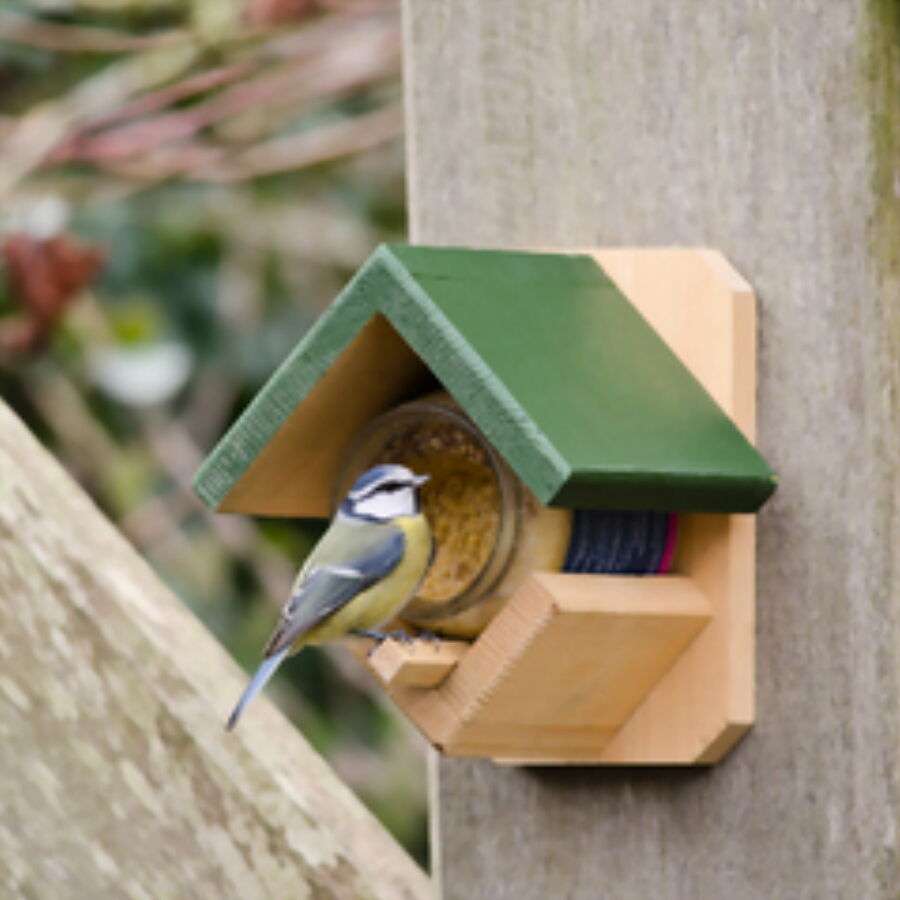 Wild Bird Feeder with Feed: Peanut Butter Pot Holder with ...