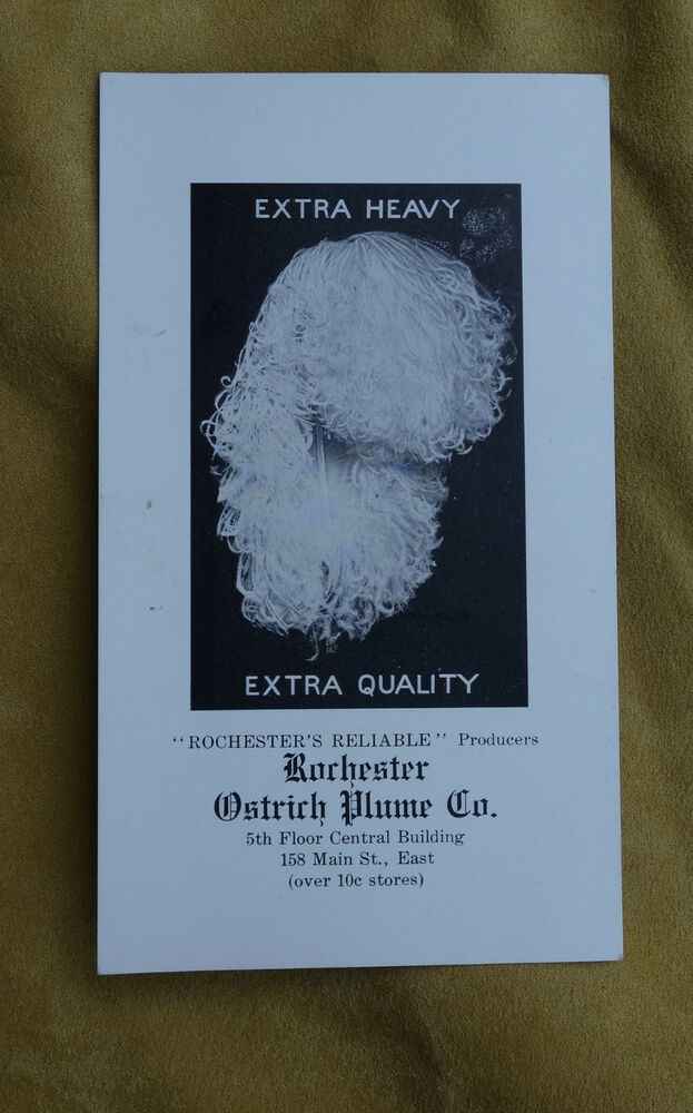 antique ostrich plume advertising card rochester ny