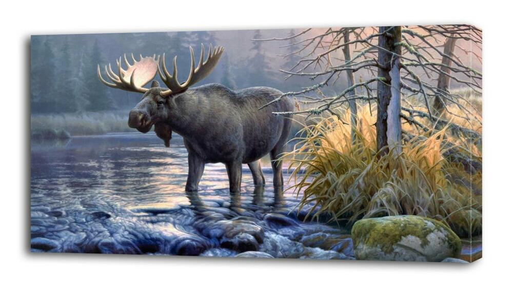 4 Sizes Moose Canvas Print Wall Decor Art Giclee Nature