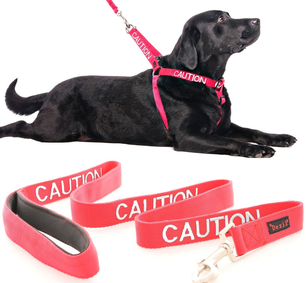 Non Pull Dog Harness Warning Color Coded Red Caution 2 4 6