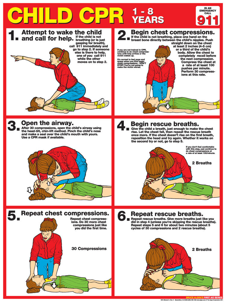 This is a graphic of Persnickety Printable Chart of First Aid Procedures