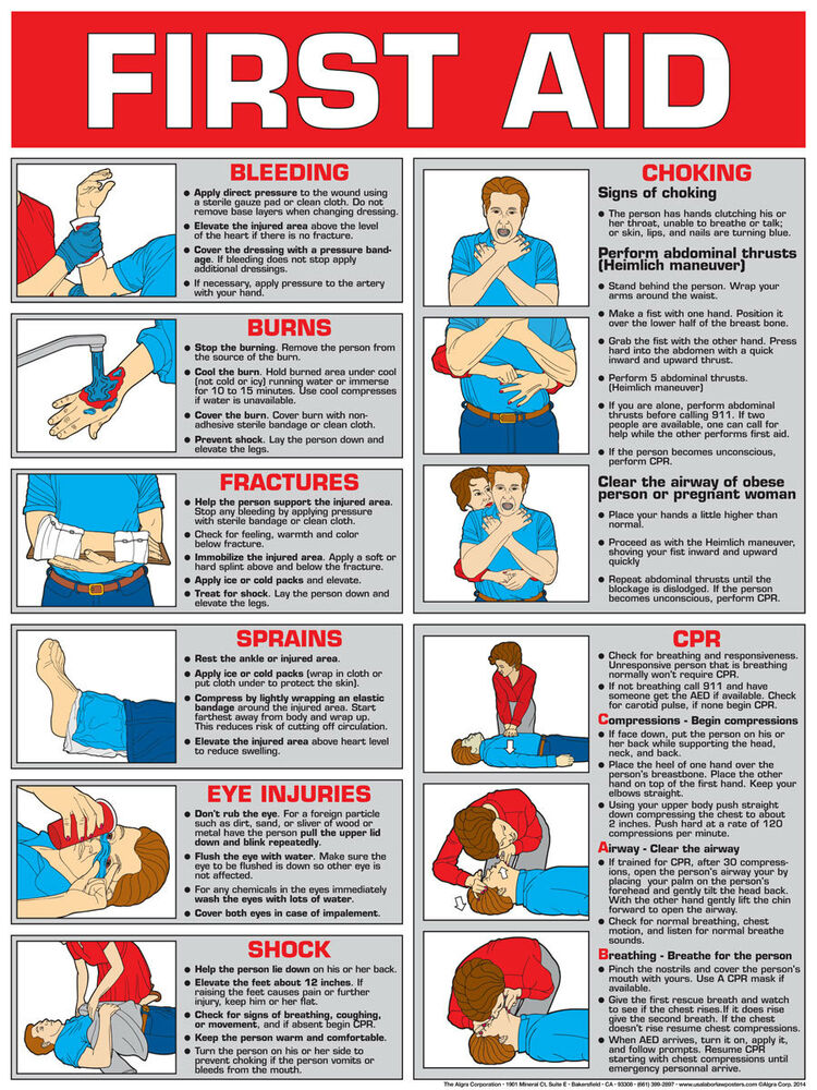 Zany image for printable first aid guide