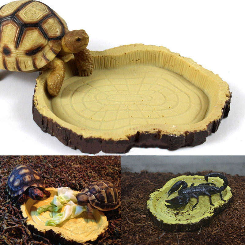 1Pc Reptile Tortoise Water Dish Amphibians Gecko Snakes Lizard Food ...
