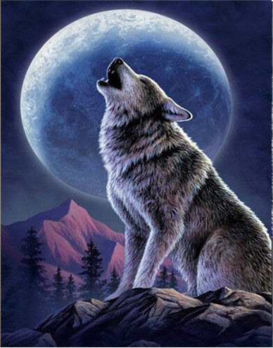 Wolf howling lenticular 3d picture animal poster painting - Wolf howling hd ...