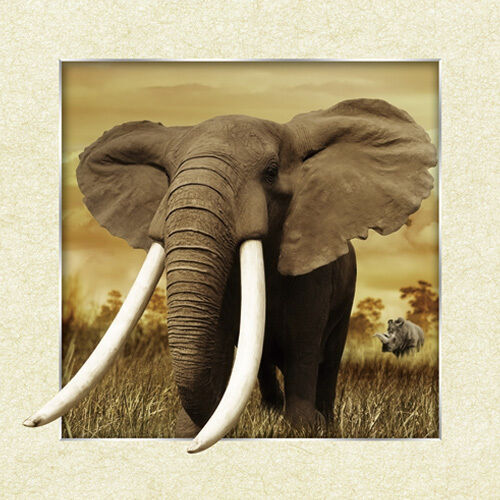 African elephants lenticular 3d picture animal poster African elephant home decor