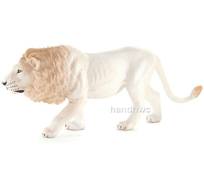 1000 shoes white lion animal facts