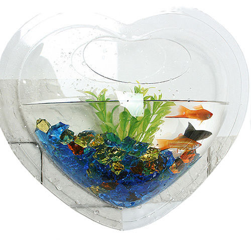 wall mount hanging betta fish bubble aquarium bowl tank
